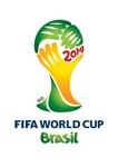 W杯ブラジル2014.jpg